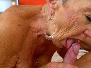 Vovó velha cavalga pau
