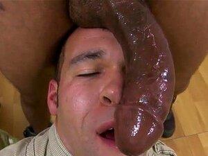 Filme garotos de emo gay porno ele conseguiu vivo?