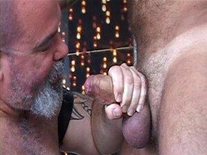 Nastydaddy - papai urso e seu filhote de músculo