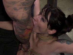 Busty slave hairy pussy banged in bondage