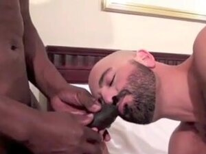 Hairy bald daddy craves BBC bareback