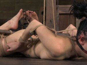 Ballgagged Veruca James tied up roughly